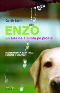 Recenzie Enzo sau Arta de a Pilota pe Ploaie de Garth Stein