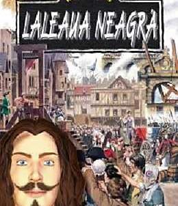 laleaua-neagra_1_produs