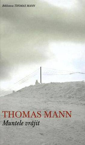 Recenzie Muntele vrăjit de Thomas Mann