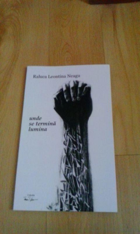 Recenzie Unde se termina lumina de Raluca Leontina Neagu