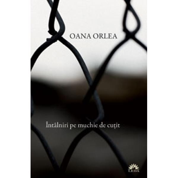 Recenzie Întâlniri pe muchie de cuțit de Oana Orlea