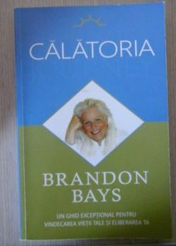 Recenzie Calatoria de Brandon Bays