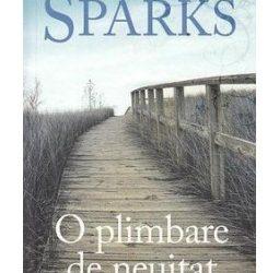 """Recenzie """" O plimbare de neuitat"""" de Nicholas Sparks"""