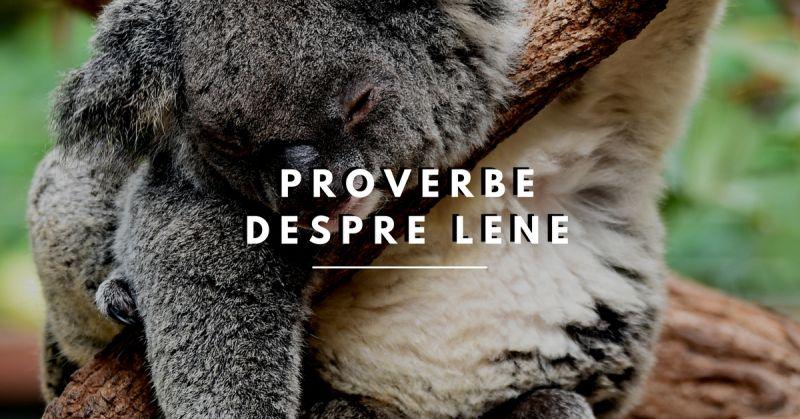 proverbe despre lene