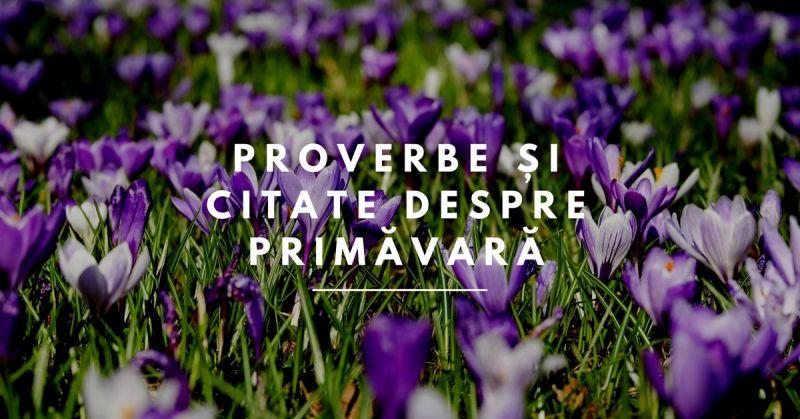 citate primavara 111 Proverbe și citate despre Primăvară   Booknation.ro citate primavara