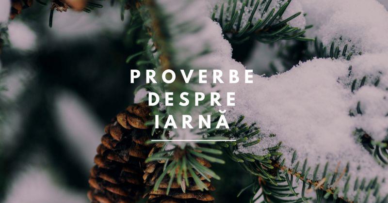 proverbe despre iarna