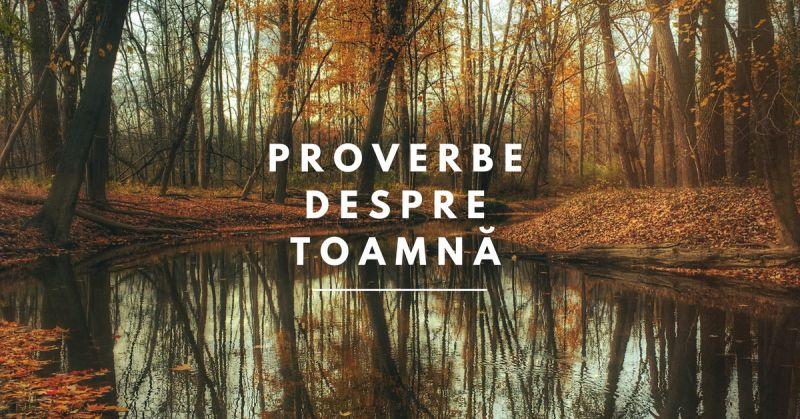 citate celebre despre toamna 100 Proverbe și Citate despre Toamnă   Booknation.ro citate celebre despre toamna
