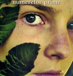 """Recenzie """"Singurătatea numerelor prime"""" de Paolo Giordano"""