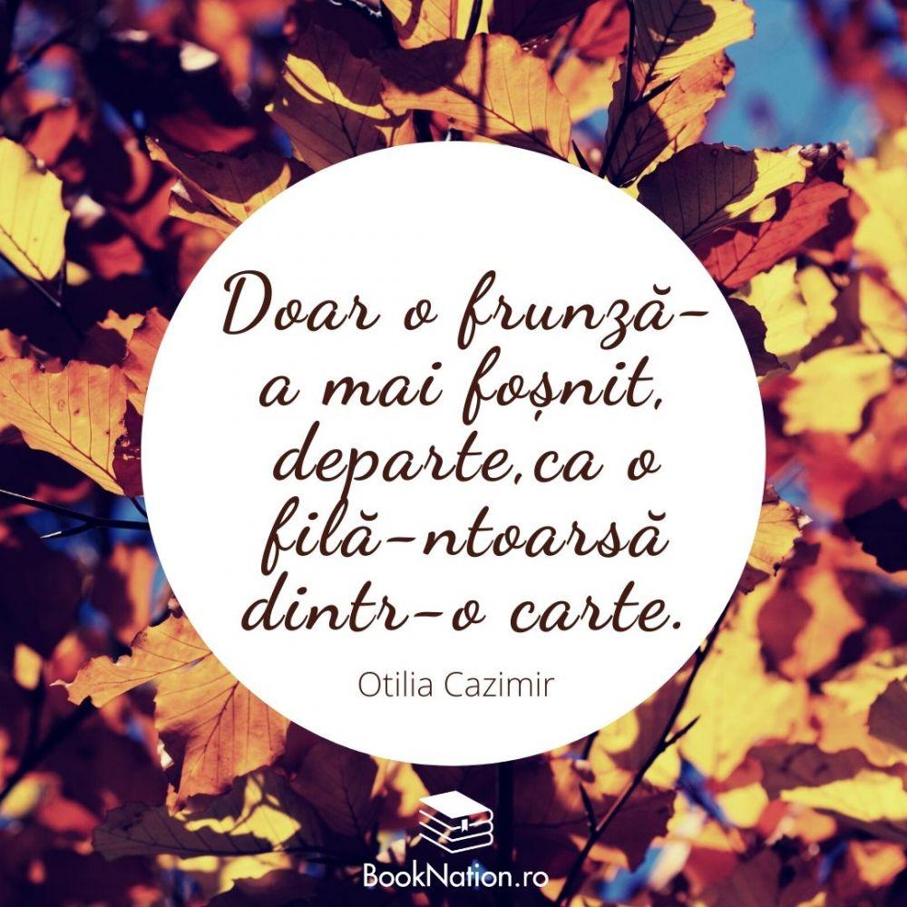 Doar o frunză-a mai foșnit, departe, Ca o filă-ntoarsă dintr-o carte.