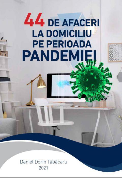 44 de Afaceri la Domiciliu in Pandemie
